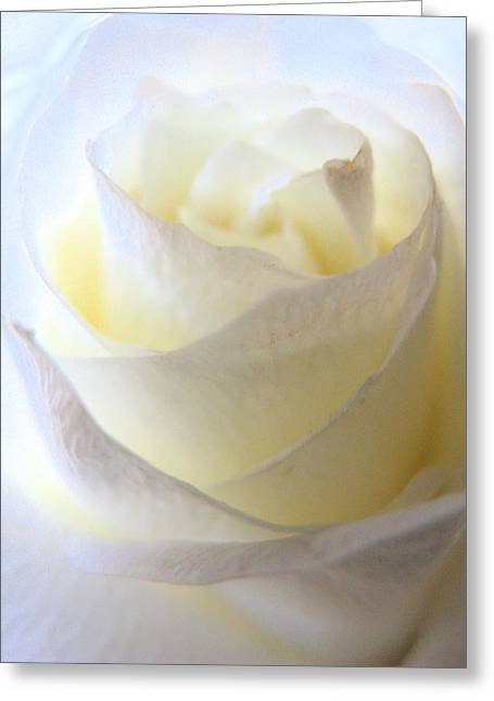 Incandescent Rose Greeting Card