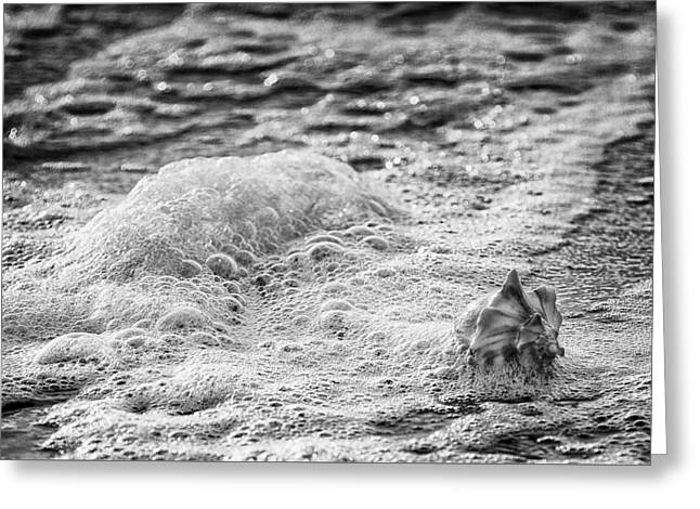 Incoming Tide Greeting Card by Donnie Smith
