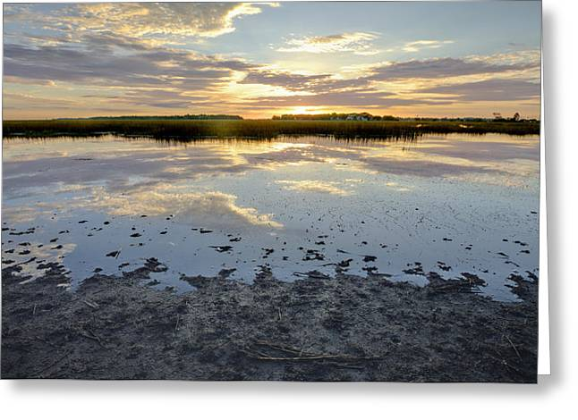 Incoming Tide Sunrise Reflection Greeting Card by Dustin K Ryan