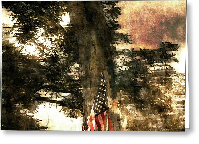 Independence Day Appalachia  Greeting Card by Steven Digman