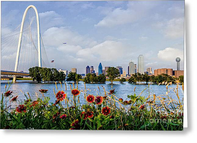 Indian Blanket Overlooking Dallas Greeting Card by Tamyra Ayles