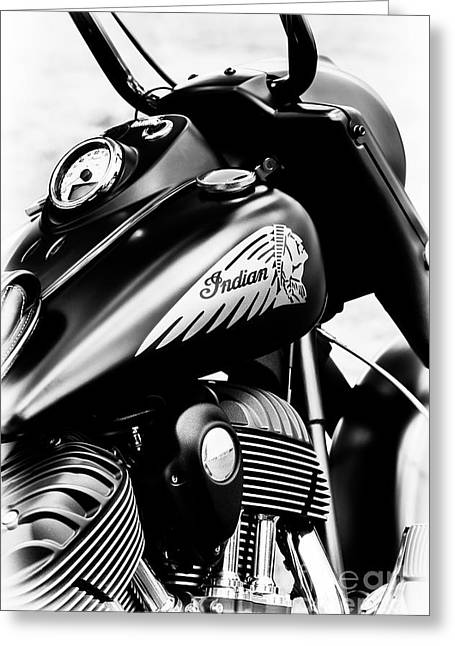 Indian Chief Dark Horse Greeting Card by Tim Gainey