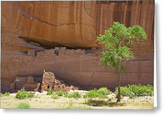 Indian Cliff Dwellings Greeting Card by Thom Gourley/Flatbread Images, LLC