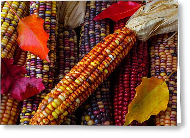 Indian Corn And Autumn Leaves Greeting Card by Garry Gay