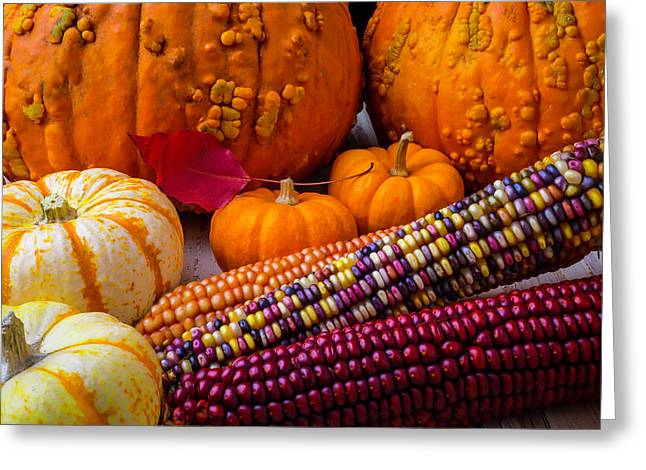 Indian Corn With Knucklehead Pumpkins Greeting Card by Garry Gay