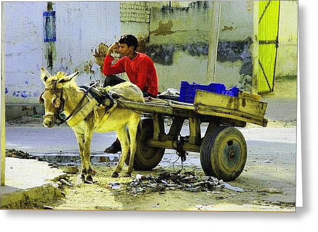 Indian Donkey Cart Owner H B Greeting Card by Gert J Rheeders