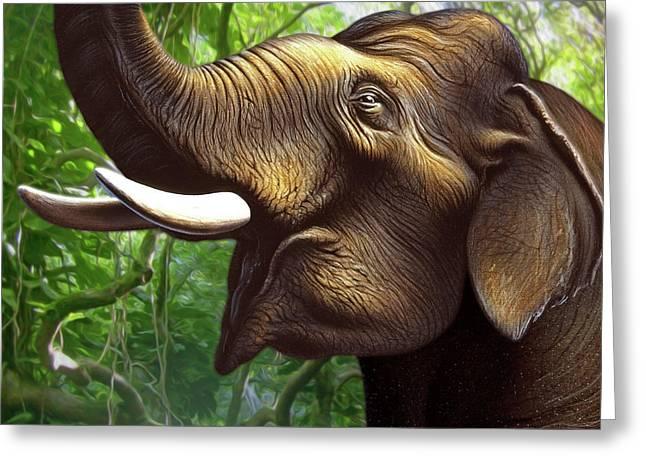 Indian Elephant 1 Greeting Card