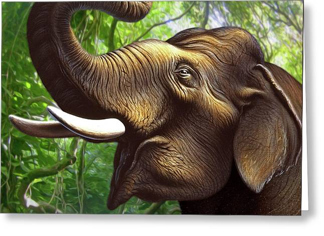 Indian Elephant 1 Greeting Card