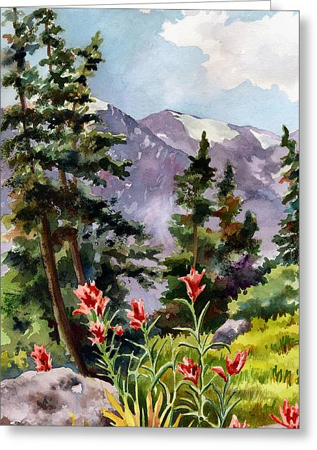 Indian Paintbrush Greeting Card by Anne Gifford