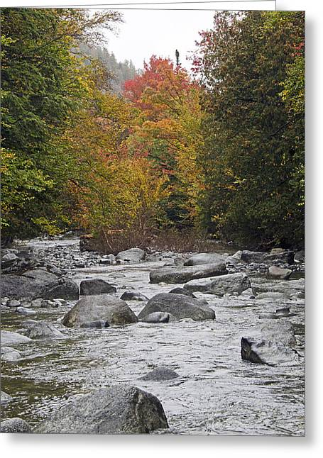 Color Change Greeting Cards - Indian Pass Brook in the Adirondack Mountains Greeting Card by Brendan Reals