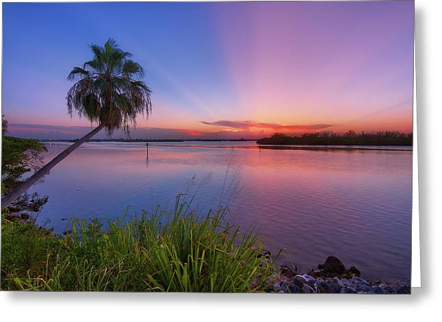 Greeting Card featuring the photograph Indian River State Park Bursting Sunset by Justin Kelefas