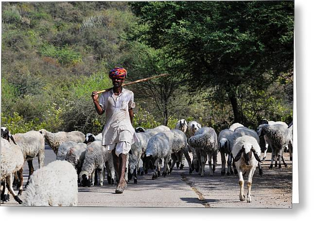 Indian Shepherd Greeting Card by Freepassenger By Ozzy CG