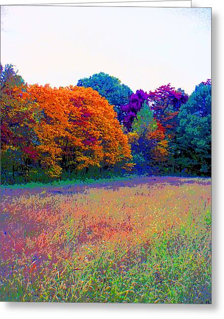 Indiana Autumn Field Image Greeting Card by Paul Price