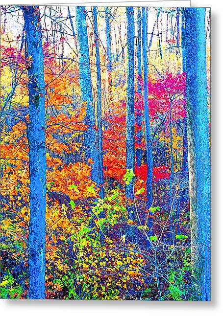 Indiana Autumn Woods Image Greeting Card by Paul Price