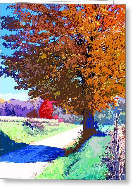 Indiana Country Road Image Greeting Card