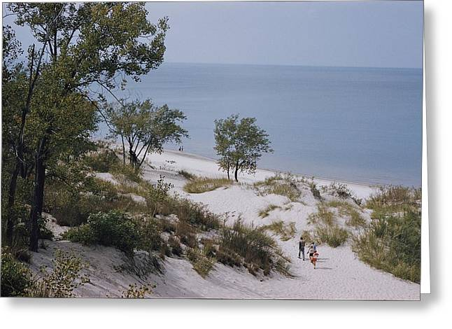 Indiana Dunes State Park Provides Greeting Card by B. Anthony Stewart