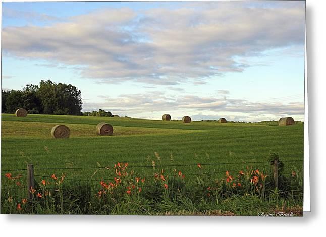 Indiana Landscape Greeting Card