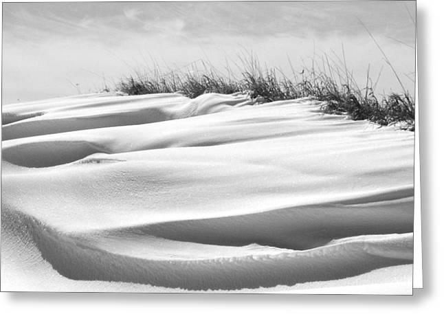 Indiana Snow Greeting Card by Michael L Kimble