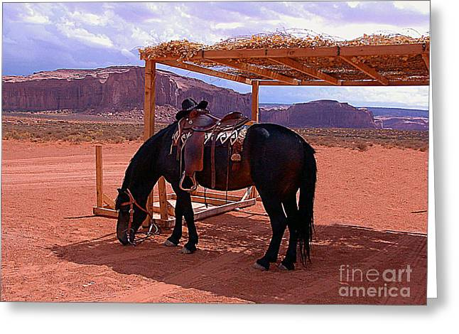 Indian's Pony In Monument Valley Arizona Greeting Card