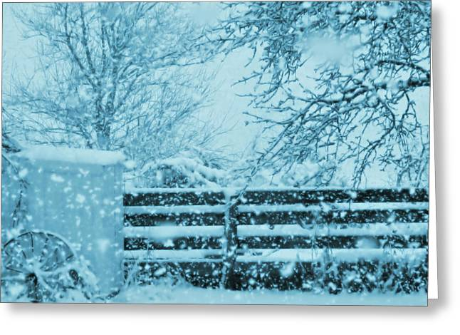 Indigo Blue Snow In The Country Greeting Card by Mary Wolf