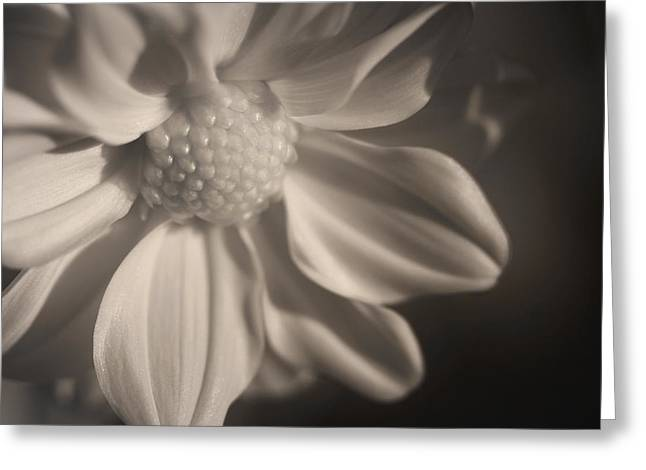 Infrared Mum Greeting Card