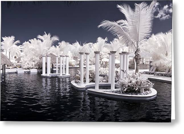 Infrared Pool Greeting Card by Adam Romanowicz