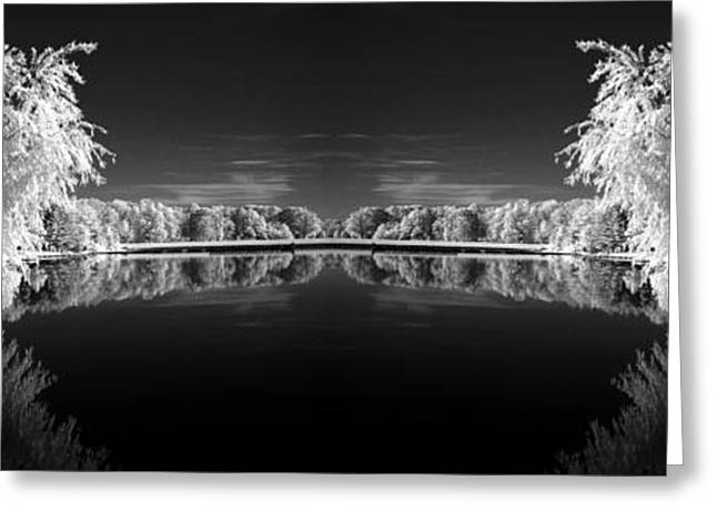 Infrared Reflections Greeting Card