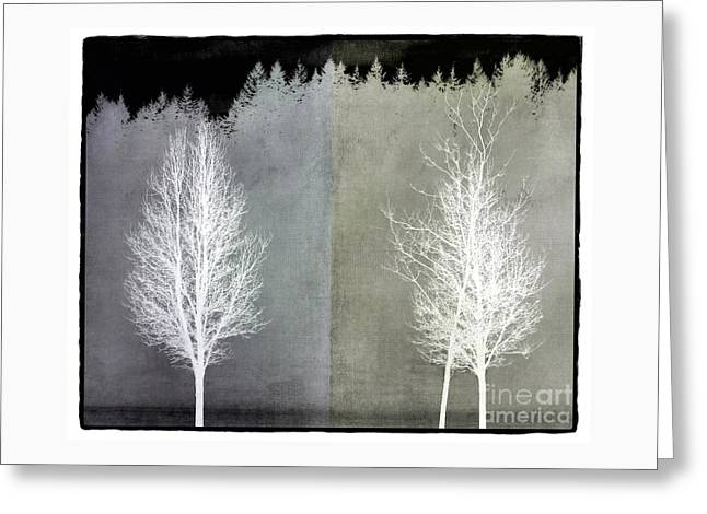 Infrared Trees With Texture Greeting Card