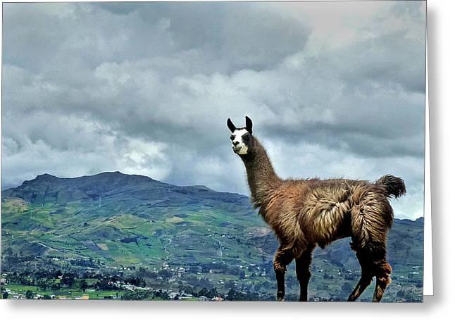 Ingapirca Incan Ruins 112 Greeting Card