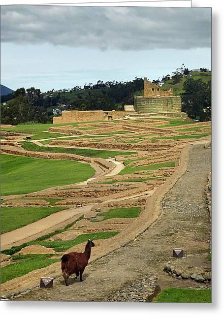 Ingapirca Incan Ruins 22 Greeting Card