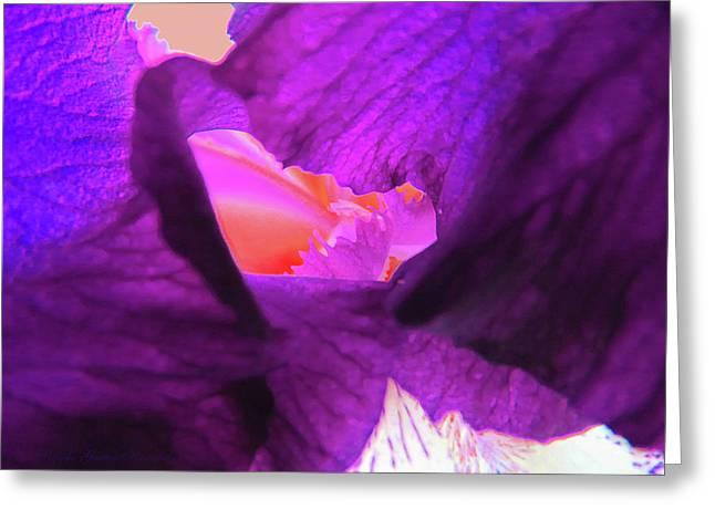 Inner Sanctum - Iris Macro - Floral Photography Greeting Card