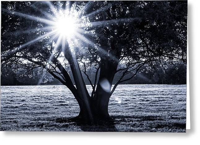 Innerlight II Greeting Card