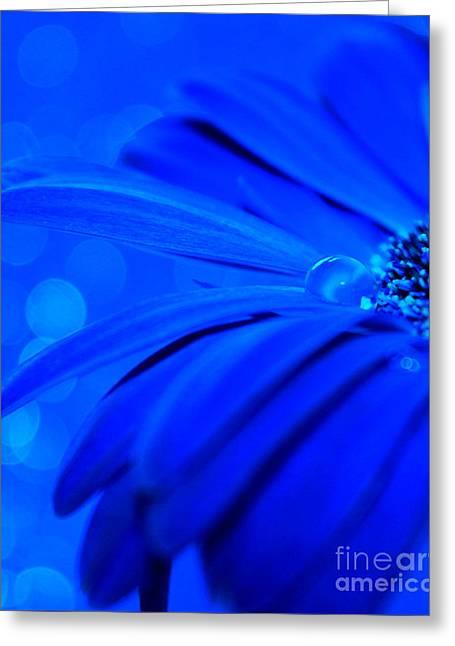Innocent Blues Greeting Card by Krissy Katsimbras