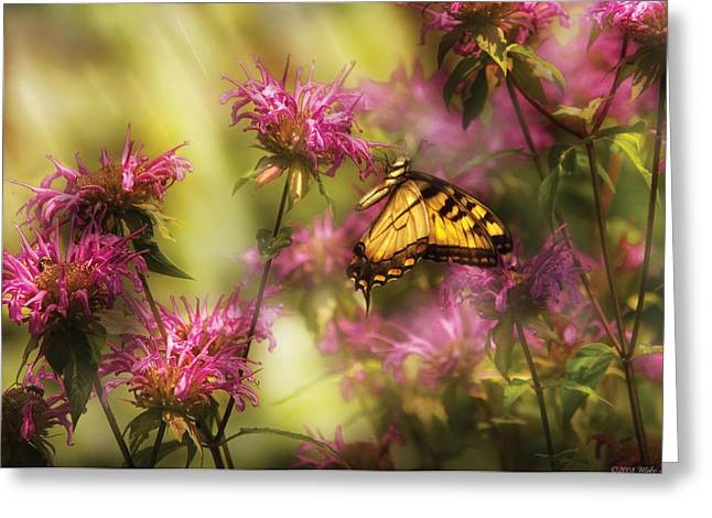 Insect - Butterfly - Golden Age  Greeting Card by Mike Savad