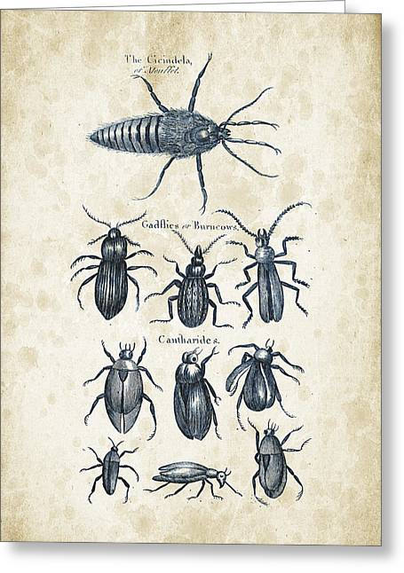 Insects - 1792 - 04 Greeting Card by Aged Pixel