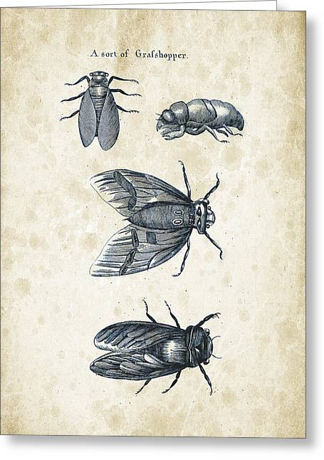 Insects - 1792 - 07 Greeting Card by Aged Pixel
