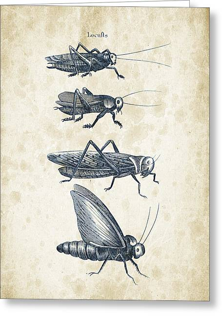 Insects - 1792 - 09 Greeting Card by Aged Pixel