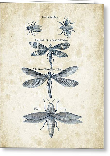 Insects - 1792 - 16 Greeting Card by Aged Pixel