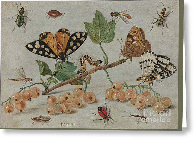 Insects And Fruit, Greeting Card