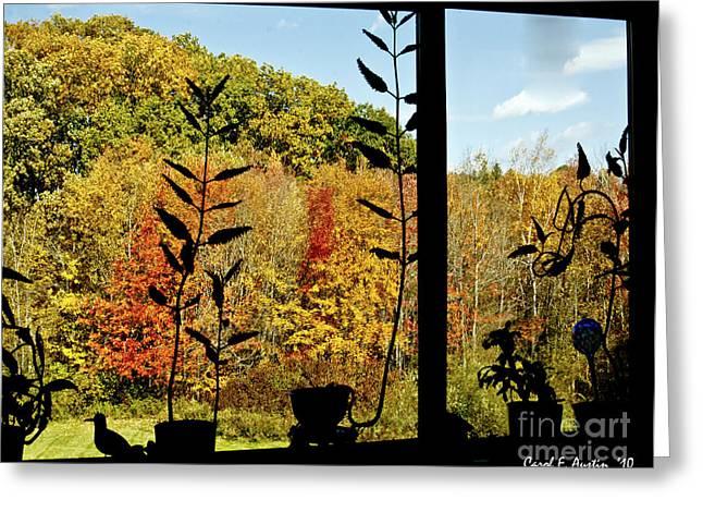 Inside Looking Outside At Fall Splendor Greeting Card by Carol F Austin