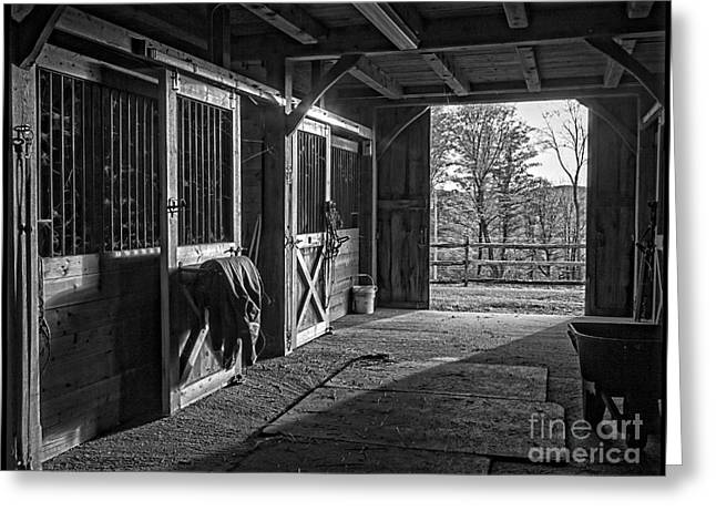 Inside The Horse Barn Black And White Greeting Card by Edward Fielding