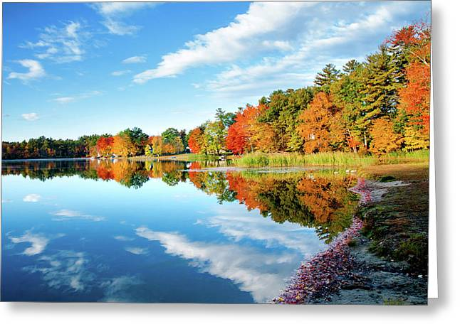 Inspiration Greeting Card by Greg Fortier