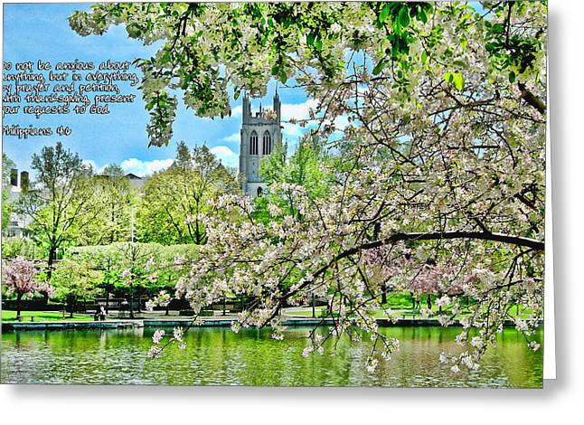 Inspirational - Cherry Blossoms Greeting Card