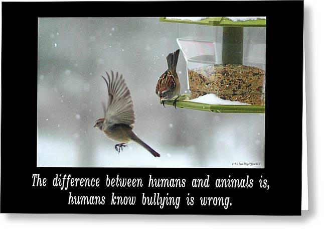 Inspirational-the Difference Between Humans And Animals Is, Humans Know That Bullying Is Wrong. Greeting Card