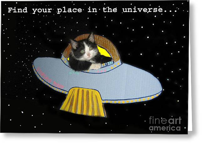 Inspirational Words From Teddy The Ninja Cat Greeting Card