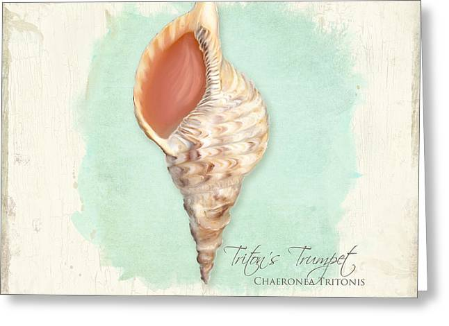 Inspired Coast Vi - Triton's Trumpet Shell On Board Greeting Card by Audrey Jeanne Roberts