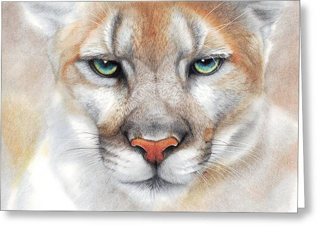 Intensity - Mountain Lion - Puma Greeting Card