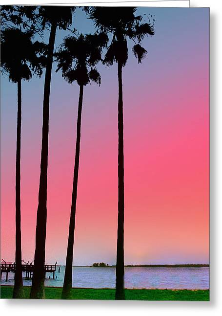 Intercoastal Sunset Greeting Card by Bill Cannon