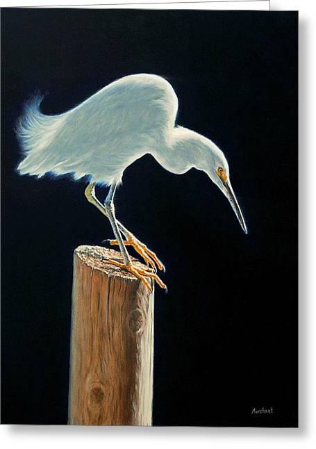 Interlude - Snowy Egret Greeting Card