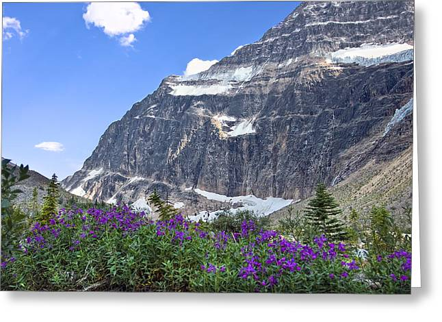 Interpretive Apps In The Canadian Rockies Greeting Card